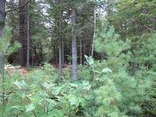 Lot for sale in Harrington, Laurentides, Chemin du Loup, 12439647 - Centris