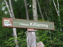 Lot for sale in Mont-Tremblant, Laurentides, Chemin  Killarney, 26720122 - Centris