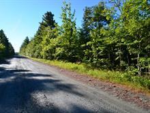 Land for sale in Saint-Joseph-de-Coleraine, Chaudière-Appalaches, Route du 6e Rang, 22937365 - Centris