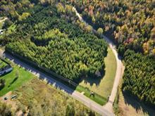 Terre à vendre à Saint-Jean-de-Matha, Lanaudière, 1279A, Chemin de la Rivière-Blanche, 23104822 - Centris