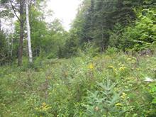 Terrain à vendre à Sainte-Marguerite-du-Lac-Masson, Laurentides, Chemin du Lac-Violon, 9352688 - Centris