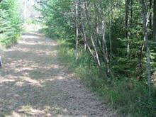 Lot for sale in Saint-Côme, Lanaudière, 471, Chemin de Sainte-Émélie, 23305308 - Centris