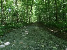 Lot for sale in Sutton, Montérégie, Chemin  Old Notch, 13392450 - Centris
