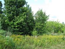 Lot for sale in Hemmingford - Canton, Montérégie, Chemin  Elizabeth, 24093690 - Centris
