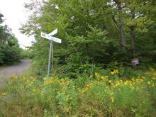 Lot for sale in Saint-Adolphe-d'Howard, Laurentides, 18e Rue, 15702385 - Centris