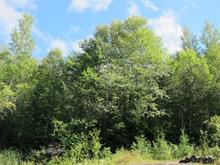 Lot for sale in Saint-Faustin/Lac-Carré, Laurentides, Chemin des Gros-Becs, 20181686 - Centris