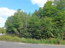 Terrain à vendre à Rawdon, Lanaudière, Rue de Rawdon Park, 28967517 - Centris