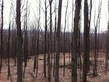 Lot for sale in Bromont, Montérégie, Chemin de Missisquoi, 24715859 - Centris