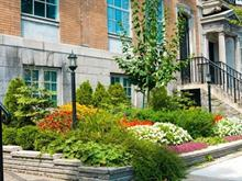 Condo à vendre à Ville-Marie (Montréal), Montréal (Île), 1581, Avenue du Docteur-Penfield, app. 101, 11165337 - Centris