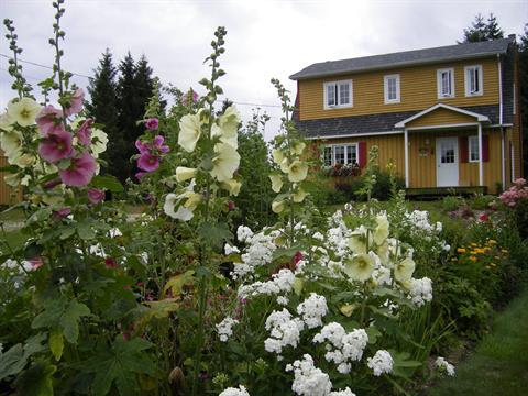 Maison à vendre à Saint-Fortunat, Chaudière-Appalaches, 61, Chemin du 8e-Rang Est, 9741324 - Centris