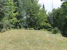 Lot for sale in Otter Lake, Outaouais, 146, Chemin du Petit-Lac-Murray, 10357933 - Centris