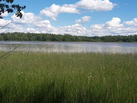 Lot for sale in La Motte, Abitibi-Témiscamingue, 272, Chemin du Lac-La Motte, 28062498 - Centris