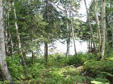 Lot for sale in Otter Lake, Outaouais, 140, Chemin du Petit-Lac-Murray, 22183456 - Centris