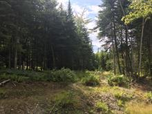 Lot for sale in Ascot Corner, Estrie, Rue de l'Everest, 19779887 - Centris