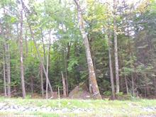 Lot for sale in Sainte-Adèle, Laurentides, Rue du Mont-Terrible, 21133430 - Centris