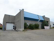 Bâtisse industrielle à vendre à Rivière-des-Prairies/Pointe-aux-Trembles (Montréal), Montréal (Île), 11665, Avenue  Philippe-Panneton, 10994434 - Centris