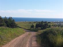 Terrain à vendre à Les Îles-de-la-Madeleine, Gaspésie/Îles-de-la-Madeleine, Chemin du Bassin, 20938151 - Centris