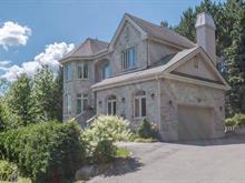 Maison à vendre à Sainte-Agathe-des-Monts, Laurentides, 52, Rue  Victoria, 25390573 - Centris