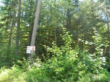 Lot for sale in Rapides-des-Joachims, Outaouais, Chemin du Lac-McConnell, 12784343 - Centris