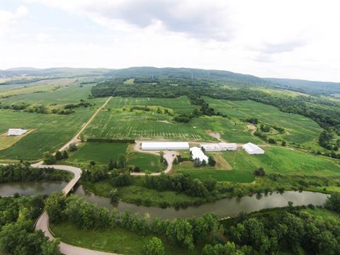 Farm for sale in Notre-Dame-de-Bonsecours, Outaouais, 1105, Côte du Front, 26628661 - Centris