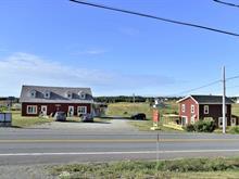 Maison à vendre à Les Îles-de-la-Madeleine, Gaspésie/Îles-de-la-Madeleine, 1184, Chemin des Caps, 27495486 - Centris