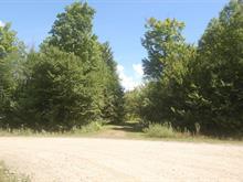 Lot for sale in Notre-Dame-des-Bois, Estrie, 201, Chemin  Georges, 16556141 - Centris