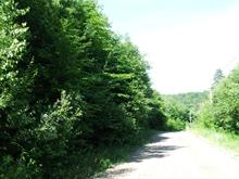 Lot for sale in Montcalm, Laurentides, Chemin du Lac-Richer Nord, 28117696 - Centris