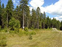 Lot for sale in Frontenac, Estrie, Route  161, 15397797 - Centris