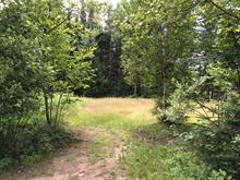 Lot for sale in Lac-Supérieur, Laurentides, Chemin du Lac-Harel, 28865175 - Centris