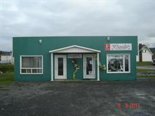 Duplex à vendre à Sainte-Anne-des-Monts, Gaspésie/Îles-de-la-Madeleine, 326A - 326B, boulevard  Sainte-Anne Ouest, 13385163 - Centris