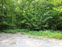 Lot for sale in Chertsey, Lanaudière, Avenue du Bois-Joli, 20556676 - Centris