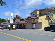 Commercial building for sale in Lac-Etchemin, Chaudière-Appalaches, 216, 2e Avenue, 24254925 - Centris