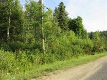 Terre à vendre à Chertsey, Lanaudière, Avenue  Yacyno, 16123745 - Centris