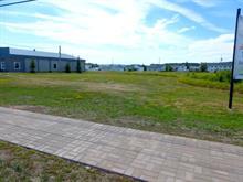 Terrain à vendre à Ville-Marie, Abitibi-Témiscamingue, 71, Rue des Oblats Nord, 14063019 - Centris