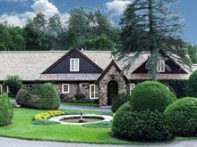 Maison à vendre à Sainte-Agathe-des-Monts, Laurentides, 16A - 18B, Avenue  Nantel, 12475146 - Centris