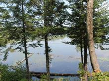 Lot for sale in Otter Lake, Outaouais, 133, Chemin du Lac-Murray, 26495443 - Centris
