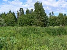 Lot for sale in Grande-Rivière, Gaspésie/Îles-de-la-Madeleine, Chemin des Bois, 27005390 - Centris