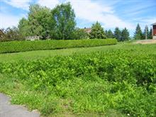 Lot for sale in Témiscouata-sur-le-Lac, Bas-Saint-Laurent, Rue de la Fabrique, 23428363 - Centris