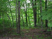 Lot for sale in Saint-Colomban, Laurentides, Rue des Bouleaux, 24578688 - Centris