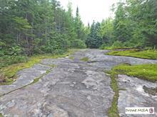 Land for sale in Saint-Ferréol-les-Neiges, Capitale-Nationale, 6000, Rang  Saint-Nicolas, 16918556 - Centris