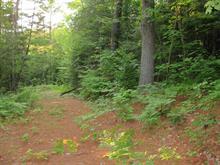 Terre à vendre à Chénéville, Outaouais, Chemin de la Belle-Vallée, 14232693 - Centris