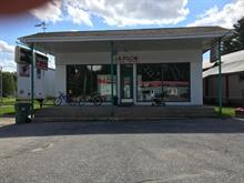 Commercial building for sale in Lac-Saguay, Laurentides, 237, Route  117, 17670560 - Centris