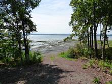Lot for sale in Saint-Jean-de-l'Île-d'Orléans, Capitale-Nationale, 151, Chemin de l'Héritage, 21573849 - Centris
