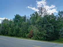 Terrain à vendre à Rock Forest/Saint-Élie/Deauville (Sherbrooke), Estrie, Chemin  Blanchette, 14355434 - Centris