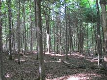 Lot for sale in Harrington, Laurentides, Chemin du Plateau, 14738353 - Centris