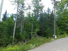 Lot for sale in Lac-Supérieur, Laurentides, Impasse du Cerf, 17187539 - Centris