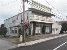 Income properties for sale in Lambton, Estrie, 172 - 182B, Rue  Principale, 11467335 - Centris