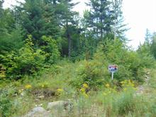Lot for sale in Chertsey, Lanaudière, Rue  Daphnie, 27845960 - Centris