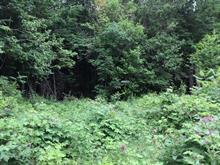 Terrain à vendre à Messines, Outaouais, Sentier de la Ferme, 28427976 - Centris