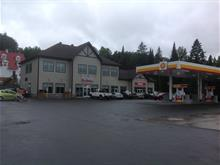 Commercial unit for rent in Saint-Donat, Lanaudière, 868, Rue  Principale, suite C, 20305377 - Centris